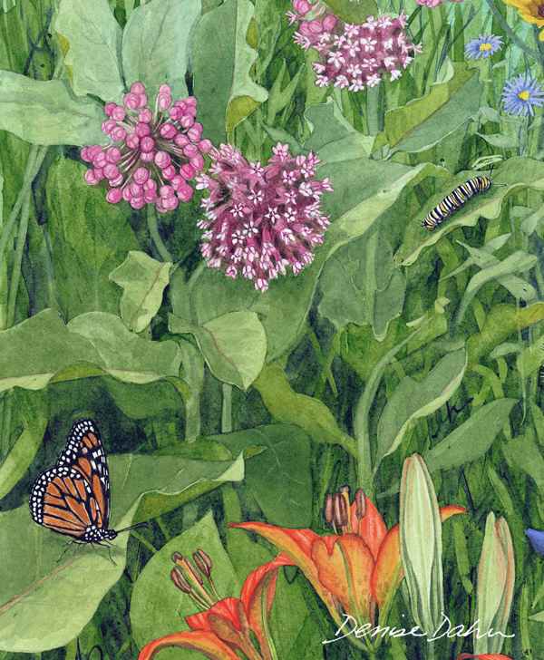 This is a section of a large watercolor illustration I did for the State of Minnesota. The intent of the poster was to encourage prairie habitat preservation.